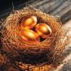 Яйцо для волос: рецепты масок, шампуней, бальзамов